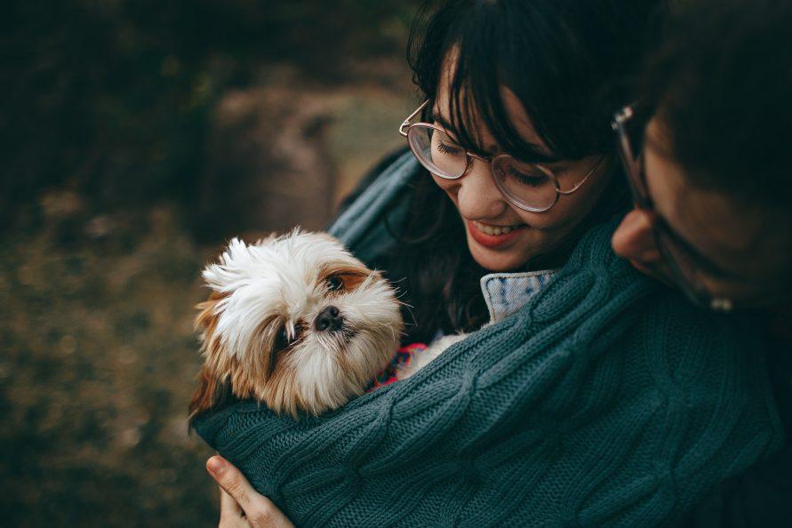 camping avec chien accepté